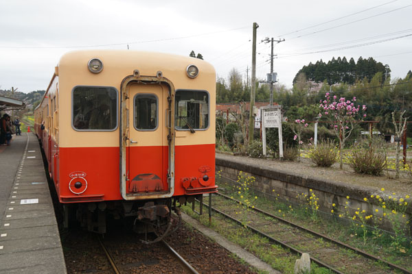 DSC00255-1.jpg