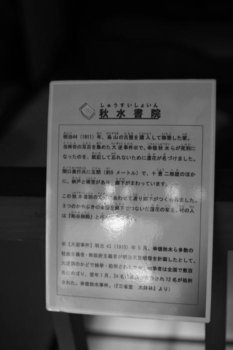 DSC08791.JPG
